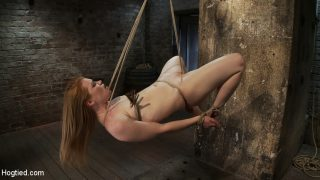 Category 5 Suspensiontwo Ropes, One Though Her Shaved Pussyand A Cock In Her Mouth, Nice – HogTied